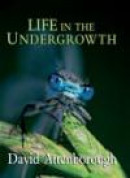 Life in the Undergrowth -- Bok 9780691127033